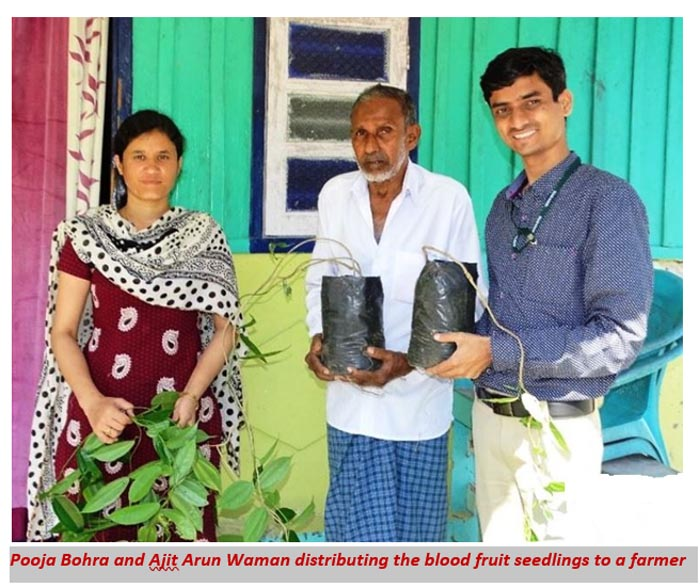Pooja Bohra and Ajit Arun Waman distributing the bloodfruit seedlings to a farmer