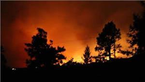 फ्रांसजंगल की आग से बड़े पैमाने पर पलायन
