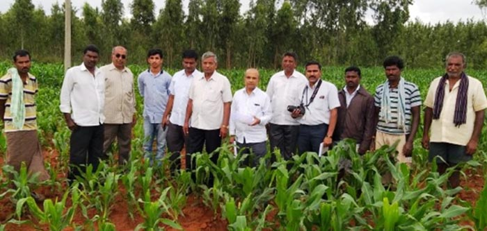 University of Agricultural Sciences, Bengaluru team in the field