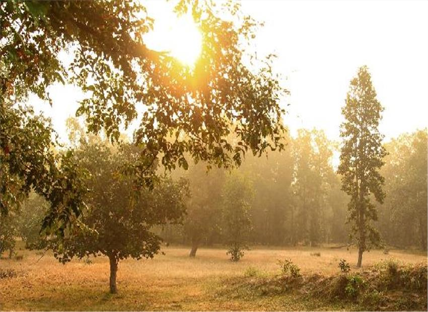 Image result for सुबह की धूप