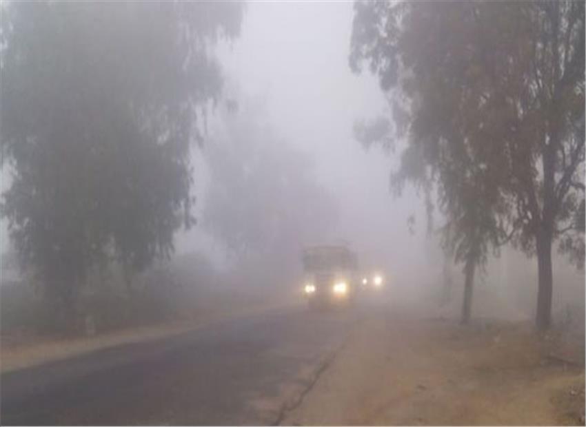 बिहार में कोहरा छाया, तापमान 4.6 डिग्री सेल्सियस दर्ज 