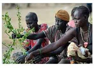दक्षिण सूडान में भुखमरी पत्तियां खाने को मजबूर लोग