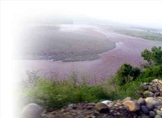 अपना स्वरूप खोती जा रही तवी नदी