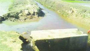 नहरों व चेकडेम की हालत बदतरमेंटनेंस के नाम पर सिर्फ खानापूर्तिखेतों तक नहीं पहुंच पा रहा पानी
