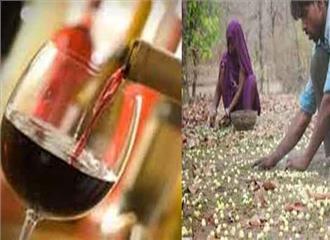 शराबबंदी और महुआ नीति की वापसी