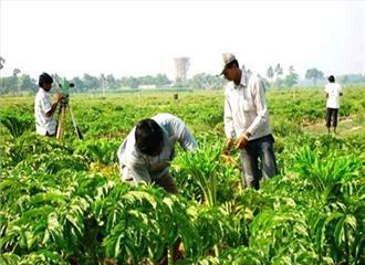 कृषि क्षेत्रसे भी बना सकते हैं टॉप करियर