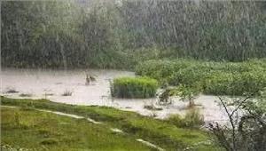 आंध्र औरतेलंगाना के तटीय इलाकों में भारी बारिश के आसार