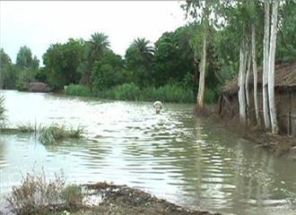 बंगालमें भारी बारिश,कई हिस्सों में बाढ़