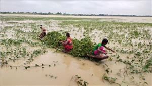 बिहार में बाढ़से मरने वालों की संख्या हुई418
