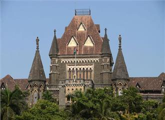 अधिकारी बैलगाड़ी रेस को लेकर दिशा-निर्देश तैयार करें बंबई उच्च न्यायालय