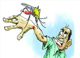 डेंगू की रोकथाम के लिए नये दिशा निर्देश जारी