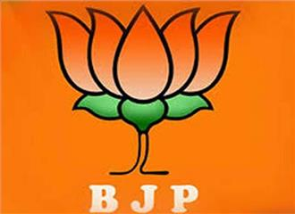 चुनाव में विकास महत्वपूर्ण मुद्दा होगा भाजपा