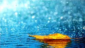 पूरब में बारिश तो पश्चिम में उमस