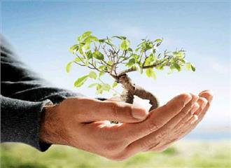 पर्यावरणीय संदर्भ में न्यायालयीन पक्ष