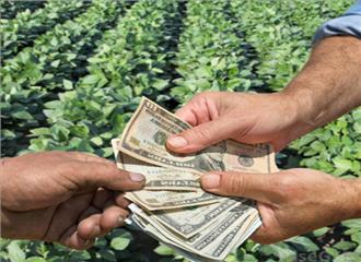 किसानों को सीधे सब्सिडी दीजिए