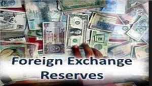 विदेशी मुद्रा भंडारलगातार तीसरे सप्ताह घटा