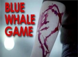 सरकार ने दिया ब्लू व्हेल गेम के लिंक्स हटाने का आदेश