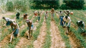 गुजरात में होगा आज़ादी कूच दलित मुस्लिम मज़दूर और किसान साथ मिलकर मांगेंगे तीन साल का हिसाब