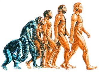 क्या मनुष्य का विकास जारी है?
