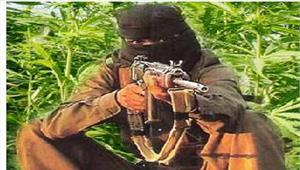 जमुई से हथियारों के जखीरे के साथनक्सली गिरफ्तार