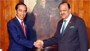 अफगानिस्तान में शांति कायम करने के लिए काम करेंगे पाकिस्तान और इंडोनेशिया
