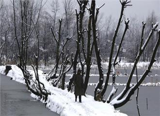 कश्मीर घाटी में न्यूनतम तापमान हिमांकु बिंदु से नीचे हुआ दर्ज
