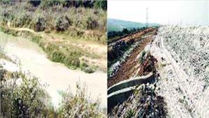 जीवनदायिनी हसदेव नदी का अस्तित्व भी खतरे में
