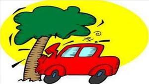 मध्यप्रदेशकार के पेड़ से टकराने से 2लोगों की मौत