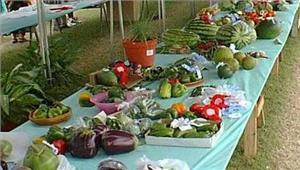 महोबा3दिवसीय कृषि मेला 25 मार्च से शुरू