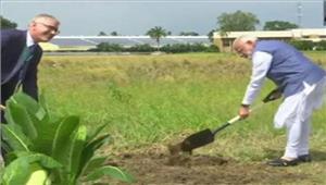 पीएम मोदी नेमनीला मेंअंतरराष्ट्रीय चावल शोध संस्थान काअवलोकन किया