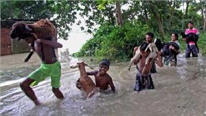 उत्तर बंगाल बाढ़ से 18 लोगों की मौत