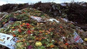 जैविक कचरे के निस्तारण के लिए प्राधिकरण ने तैयार किया प्लान