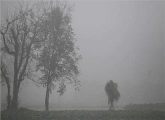 बिहार की हवाओं ने बढ़ाई ठंड