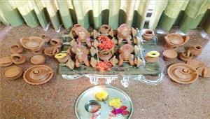 धूमधाम के साथ मनाया पोला पर्व