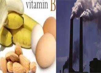 वायु प्रदूषण का असर घटाने में मददगार विटामिन बी
