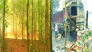 जंगल में लगी आग आबादी तक पहुंचीहड़कंप