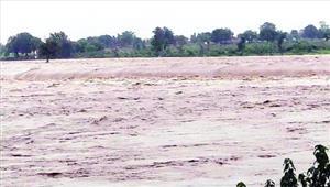 सरगुजा में लगातार बारिश से कई नदियां उफान पर