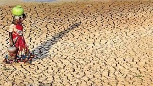 मध्यप्रदेश में कम वर्षा सूखे की आहट