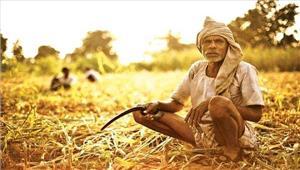 राजस्थान  किसानों की कर्ज माफी के लिए समिति गठित