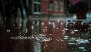 बारिश के कारण 3और जिले बाढ़ की चपेट में