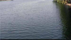 राजस्थानमोर नदी में वैन डूब जाने से2भाइयों की मौत