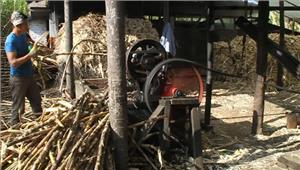 शुगर मिल पर गन्ना डालने वाले किसानों के लिए राहतभरी खबर