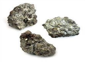 बैतूल के जंगलों में यूरेनियम की खोज में जुटे वैज्ञानिक