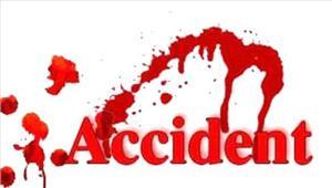 कार की टक्कर से स्कूटर सवार की मौत पोती घायल