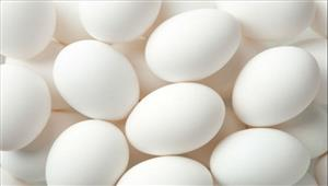 दक्षिण कोरिया करेगा 1500 टन अंडों का आयात