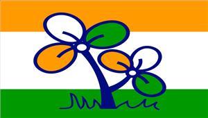 बंगालतृणमूल कांग्रेस नेशांति रैली को कियाआयोजित