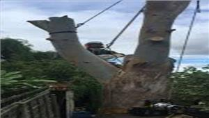 उप्र  मशीन का चक्का फटने से 2 मजदूरों की मौत2 लोग घायल
