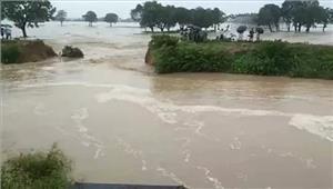 बस्तीसरयू नदी की बाढ़ से20 हज़ारकी आबादी प्रभावित