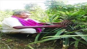 बहुआयामी उद्यानिकी कृषि से अरुण ने बदली अंचल की तस्वीर