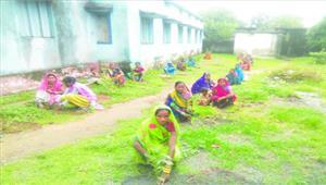 महिलाओं ने पौधरोपण कर संरक्षण का लिया संकल्प